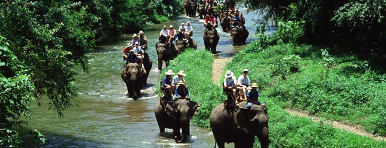 elephant-tour-ubud